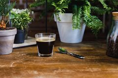 在玻璃的早晨无奶咖啡在与植物的桌上 图库摄影