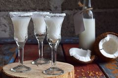 在玻璃的椰子利口酒与残破的椰树 可口Pinacolada牛奶鸡尾酒用兰姆酒 酒精饮料酒 玻璃瓶和sho 库存照片