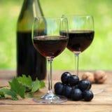 在玻璃的红葡萄酒 免版税库存照片