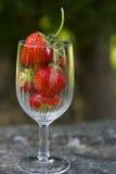 在玻璃的草莓 免版税库存照片