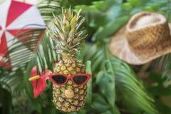 在玻璃的菠萝在热带叶子绿色背景有帽子的,伞 创造性的夏天概念 免版税图库摄影