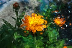 在玻璃的雨珠与颜色的反射 免版税库存图片