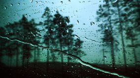 在玻璃的雨珠反对天空蔚蓝和森林 库存图片