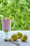 在玻璃的Chia布丁用切的新鲜的猕猴桃和两把葡萄酒匙子 戒毒所superfoods早餐或点心 免版税库存图片