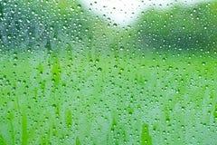 在玻璃窗的绿色水下落弄湿了湿气环境 库存图片