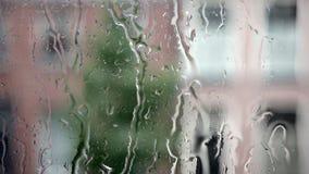 在玻璃窗的雨有房子模糊的背景和树和街道 影视素材