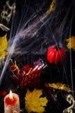 在玻璃管的血淋淋的鸡尾酒万圣夜党庆祝的 免版税图库摄影