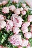 在玻璃花瓶的可爱的花 桃红色牡丹美丽的花束 花卉构成,场面,白天 墙纸 库存图片