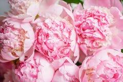 在玻璃花瓶的可爱的花 桃红色牡丹美丽的花束 花卉构成,场面,白天 墙纸 免版税库存图片