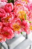 在玻璃花瓶的可爱的花 牡丹类美丽的花束珊瑚魅力 花卉构成,场面,白天 墙纸 Ve 免版税库存图片