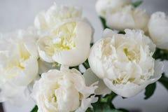 在玻璃花瓶的可爱的花 白色牡丹美丽的花束  花卉构成,场面,白天 墙纸 库存图片
