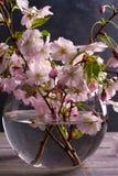 在玻璃花瓶的春天花束在葡萄酒木背景 桃红色花 春天开花 花束明亮的花照片向量 免版税库存图片