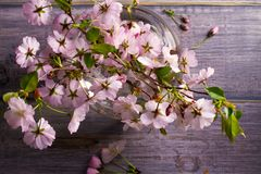 在玻璃花瓶的春天花束在葡萄酒木背景 桃红色花 春天开花 花束明亮的花照片向量 库存照片
