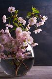 在玻璃花瓶的春天花束在葡萄酒木背景 桃红色花 春天开花 花束明亮的花照片向量 图库摄影