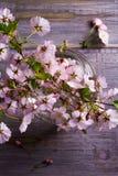 在玻璃花瓶的春天花束在葡萄酒木背景 桃红色花 春天开花 花束明亮的花照片向量 免版税库存照片