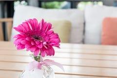 在玻璃花瓶的桃红色花 免版税图库摄影