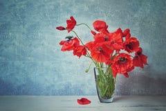 在玻璃花瓶的红色popies花 被定调子的图象 复制空间 库存图片