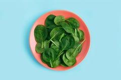 在珊瑚板材的绿色新鲜的素食沙拉叶子在蓝色背景 健康和零的废生活概念 库存图片