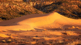 在珊瑚桃红色沙丘国家公园的温暖的光在犹他 免版税库存图片
