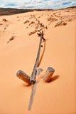 在珊瑚桃红色沙丘国家公园 库存图片