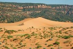在珊瑚桃红色沙丘SP 1的横向 图库摄影