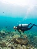在珊瑚礁的女性潜水者 免版税库存图片