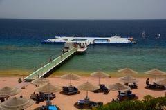 在珊瑚礁的浮动水池 Sharm El Sheikh 红海 埃及 免版税图库摄影
