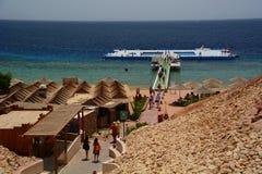 在珊瑚礁的浮动水池 Sharm El Sheikh 红海 埃及 图库摄影