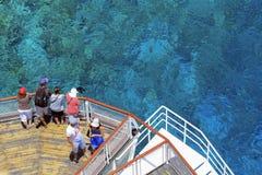 在珊瑚礁的海 库存图片