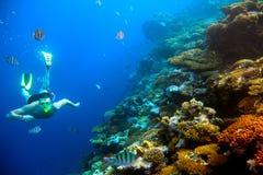 在珊瑚礁附近的水下的射击人与热带鱼 免版税库存图片