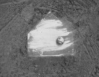在球场本垒板的棒球  图库摄影