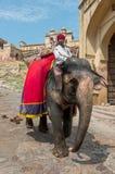 在琥珀色的堡垒,斋浦尔,拉贾斯坦-印度的大象司机 库存图片
