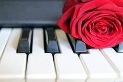 在琴键的红色玫瑰 爱情歌曲概念,浪漫音乐 图库摄影