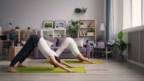 在瑜伽实践期间的年轻有家室的人和妇女实践的狗位置在家 股票录像