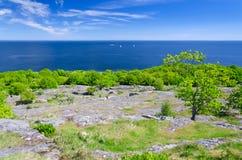 在瑞典海岸的6月 免版税库存图片