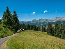 在瑞士山的小屋与草甸和路 免版税库存照片