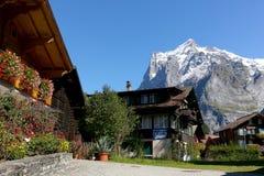 在瑞士阿尔卑斯的峰顶的中旅游胜地 免版税库存图片