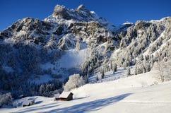 在瑞士雪圣诞节山的Braunwald 库存照片