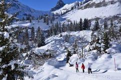 在瑞士雪圣诞节山的Braunwald 库存图片