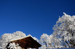 在瑞士雪圣诞节山的Braunwald 免版税库存照片