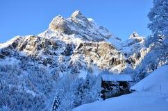 在瑞士雪圣诞节山的Braunwald 免版税库存图片