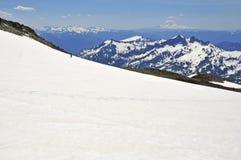 在瑞尼尔山的Muir雪原 免版税库存照片