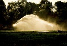 在瓜的领域的灌溉系统 浇灌领域 Sprin 图库摄影