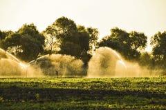 在瓜的领域的灌溉系统 浇灌领域 Sprin 免版税库存照片