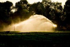 在瓜的领域的灌溉系统 浇灌领域 喷水隆头 库存图片