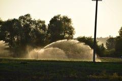 在瓜的领域的灌溉系统 浇灌领域 喷水隆头 库存照片