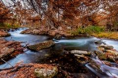 在瓜达卢佩河,得克萨斯的柔滑的水的美丽的秋叶 免版税库存图片