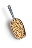 在瓢的大豆豆 免版税图库摄影