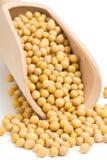 在瓢的干大豆 免版税库存图片