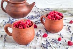 在瓦器的莓构成有干淡紫色土气背景 库存图片